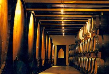 barrells inside Vilmart Champagne