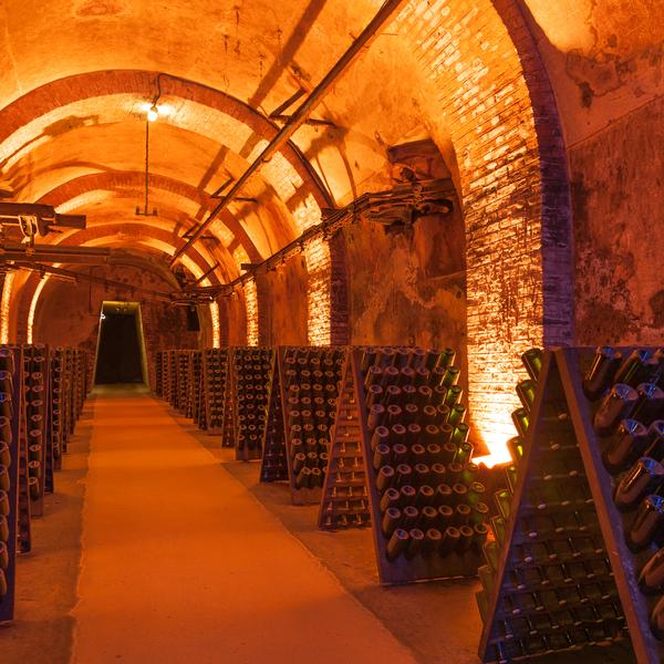 Champagne cellar in Reims, France