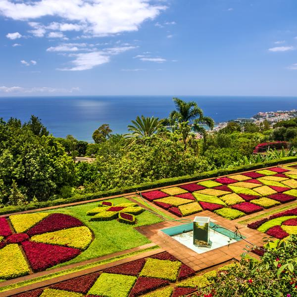 Madeira tropical botanical gardens
