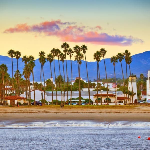 Palm trees lining Santa Barbara beach in California, USA