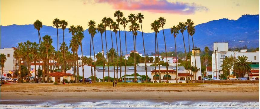 Palm trees on the beach in Santa Barbara